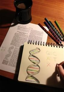 DNA_2904260c